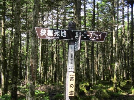 190804丸山~冷山~茶臼山 (48)s