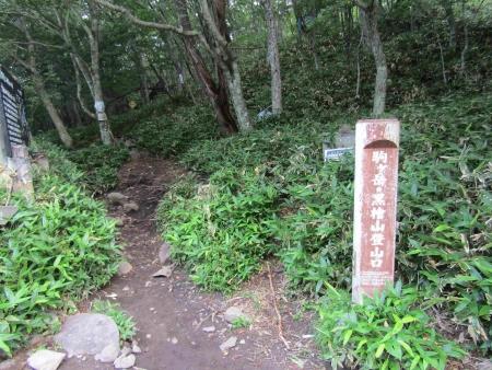 190811駒ヶ岳~黒檜山 (3)s