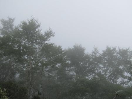 190811駒ヶ岳~黒檜山 (35)s