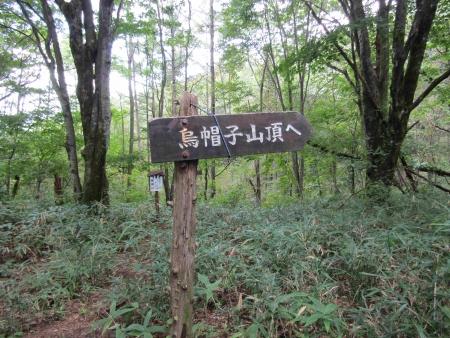 190907烏帽子ヶ岳 (2)s