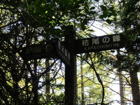 190914天狗岳撤退 (11)s