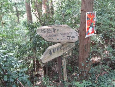 190920橋本山~虎秀山 (11)s