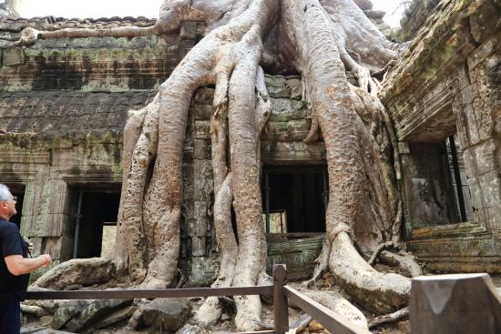 2019 03 05_カンボジア_0566