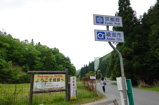20190518 綾部シャガ群生地 (1)