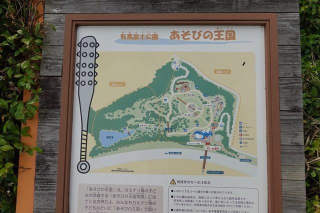 20190609 有馬富士公園 (11)