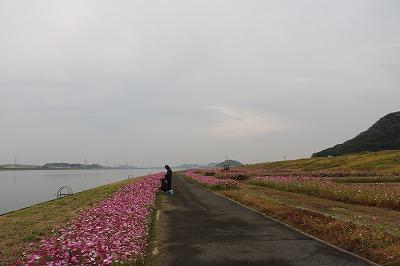 20181023_遠賀川河川敷IMG_1161