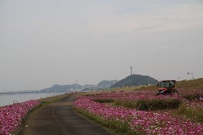 20181023_遠賀川河川敷IMG_1176