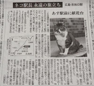 20190213_中国新聞P2171934L