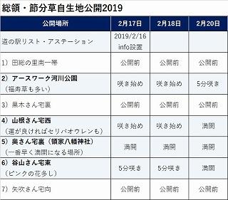 20190220節分草開花状況