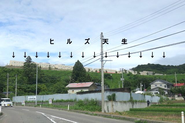 IMG_3298a.jpg
