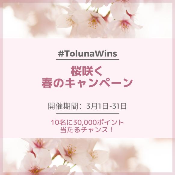 桜咲く春のキャンペーン