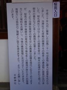 19,4,3平野神社 (4)