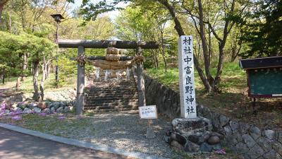 DSC_0565(中富良野神社)400