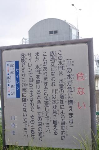 PK7_0065.jpg