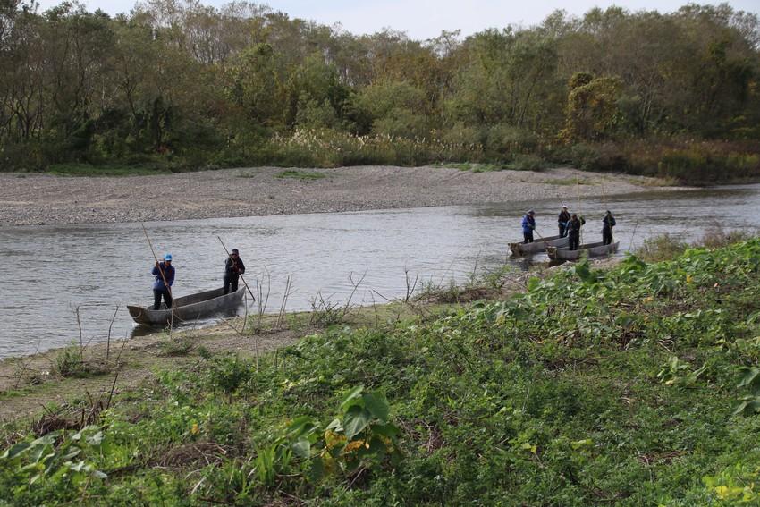 三面川の居繰網漁