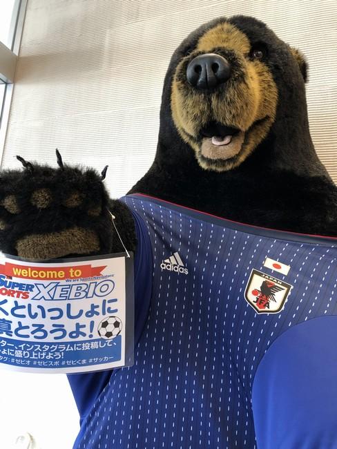 千秋にあるゼビオスポーツの看板クマさん
