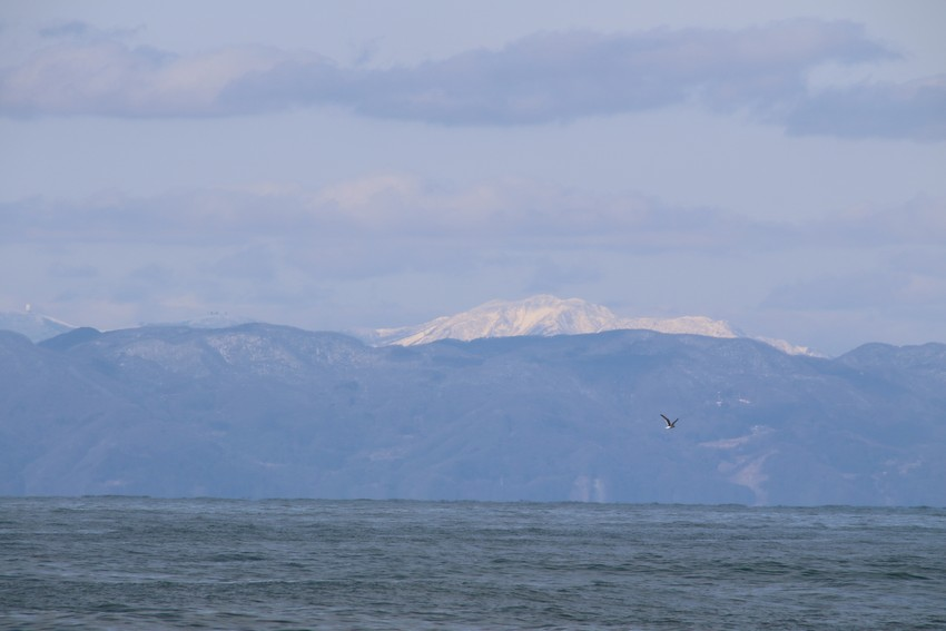 冠雪の金北山