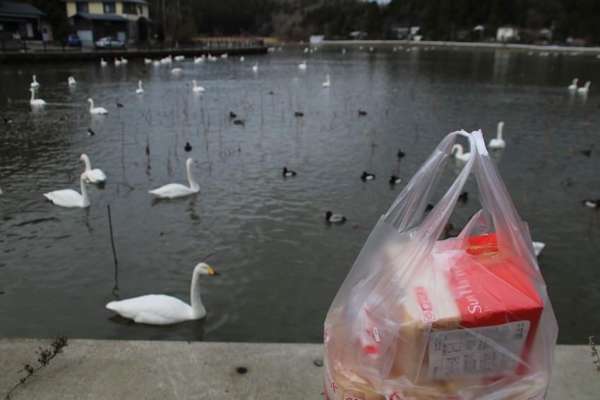 長嶺大池パンを持参しました