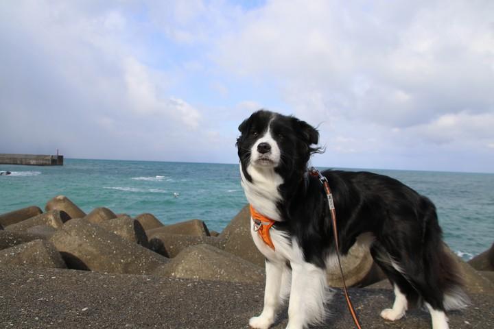 海洋公園散策