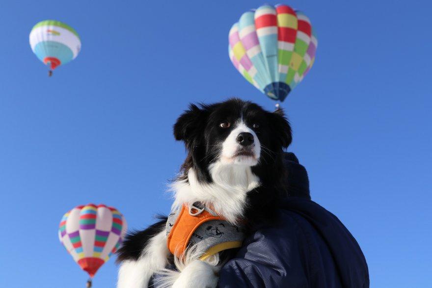 Dawn太と熱気球