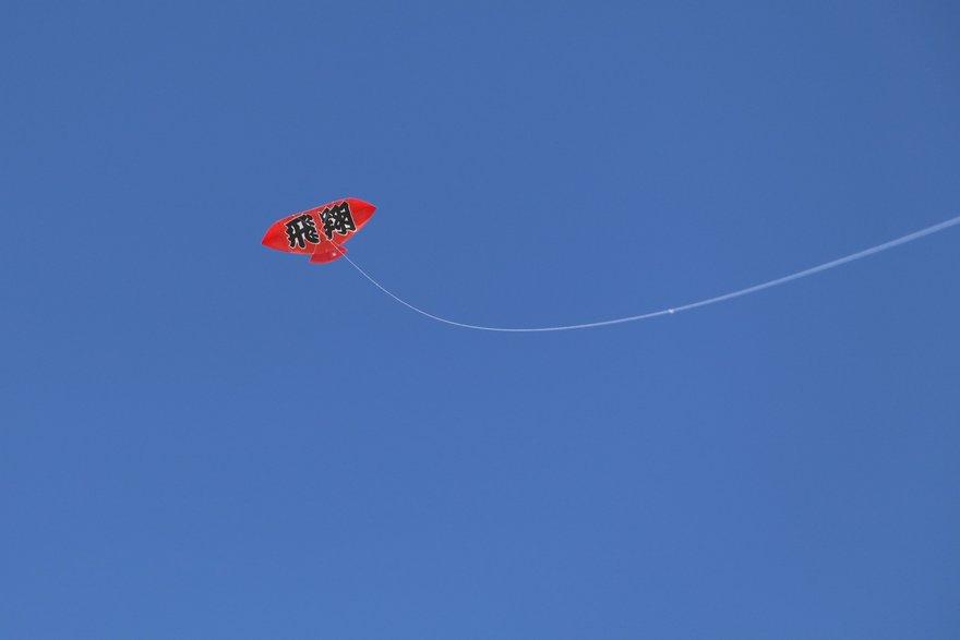 西中会場に上がる凧