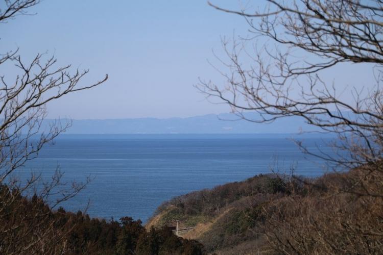 雪割草の山から見える日本海と佐渡