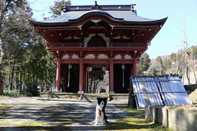お寺のニ天門