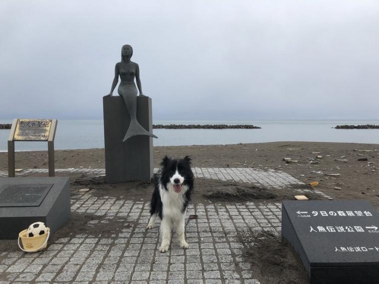 鵜の浜海水浴場入口にある人魚像とDawn太