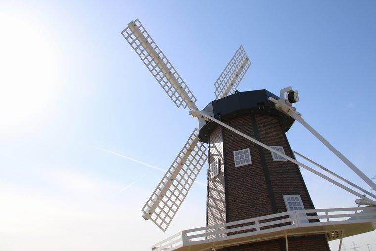 チューリップまつりの風車