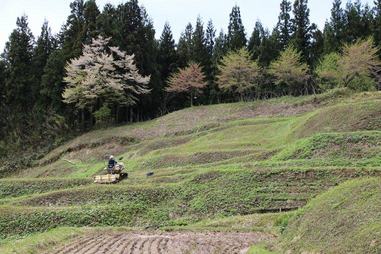 斜面を移動する耕運機
