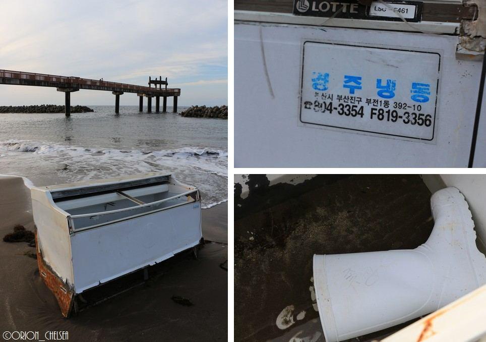 日本海の漂着ゴミ