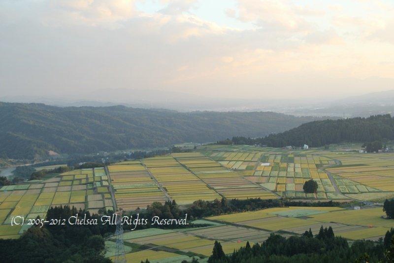 蕎麦畑のある風景
