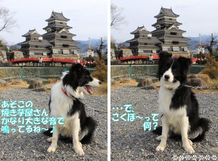 松本城とDawn太