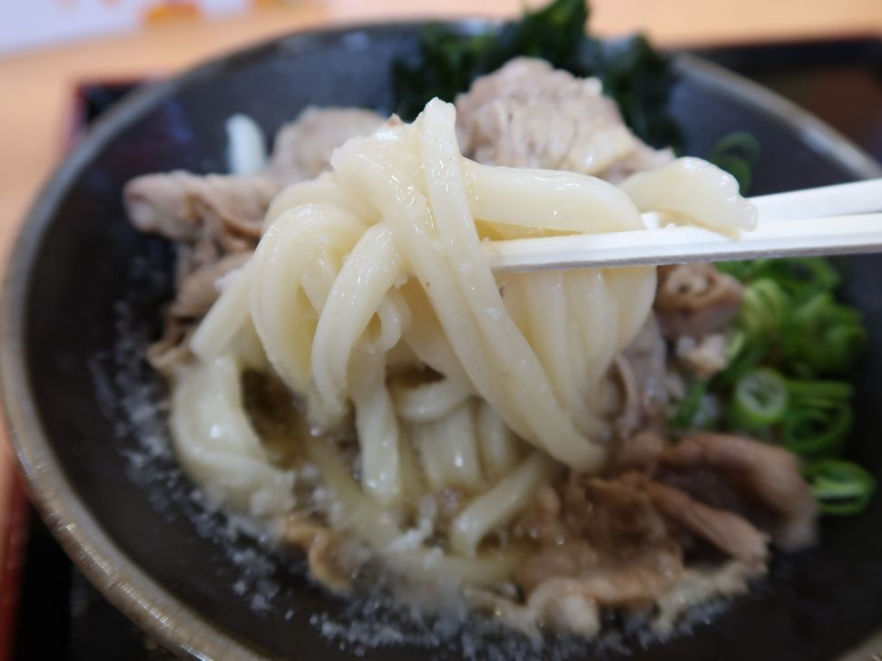 koganekasuga042021.jpg