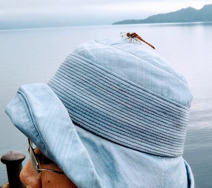 十和田湖のトンボ