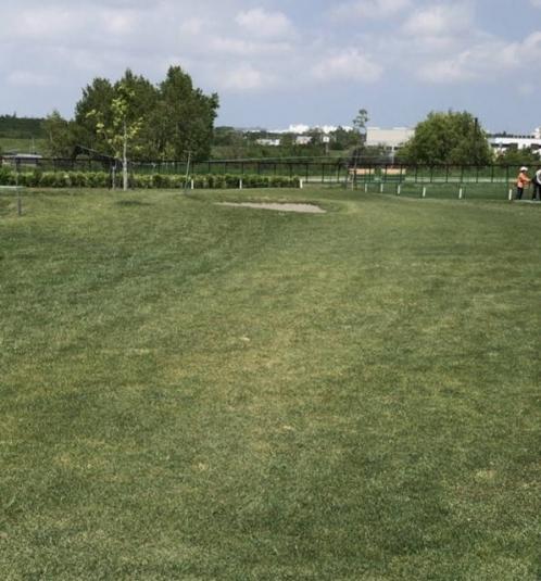 札幌市厚別区_厚別山本公園パークゴルフ場 (6)