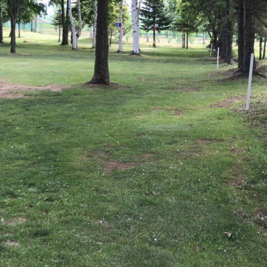 共和町_西部森林公園パークゴルフ場 (7)