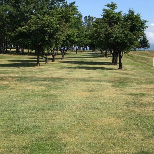 共和町_西部森林公園パークゴルフ場 (1)