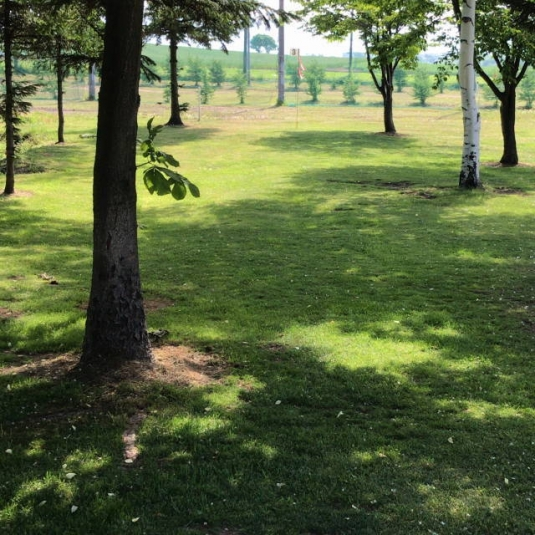 共和町_西部森林公園パークゴルフ場 (2)
