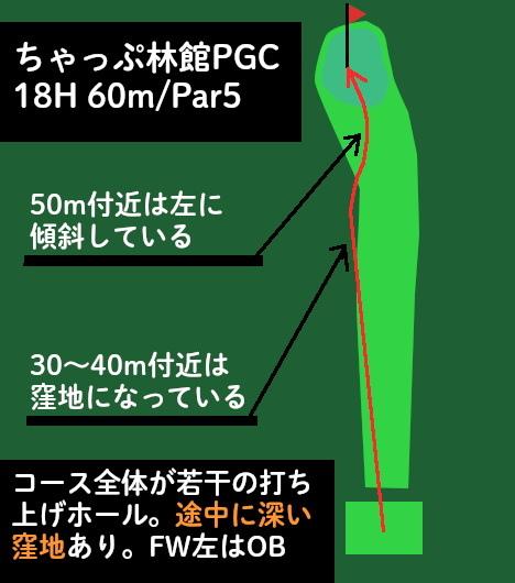 ちゃっぷ林館PGコース_18_コンドルの図