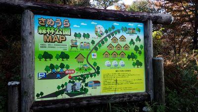 181111_4さめうら森林公園