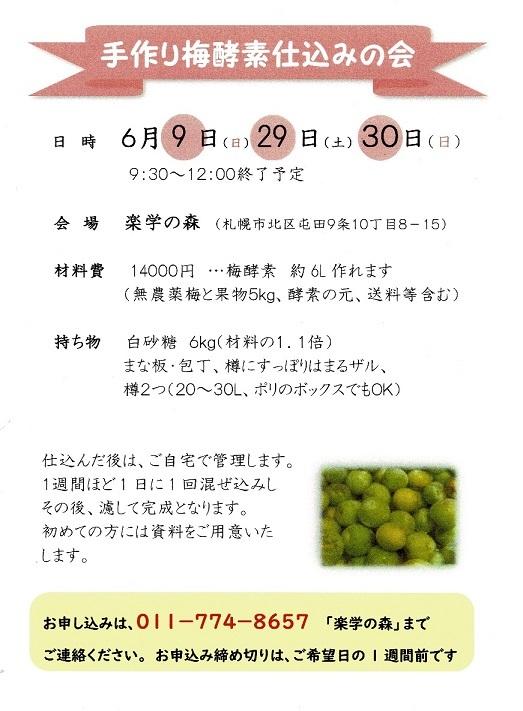 umekoso19.jpg