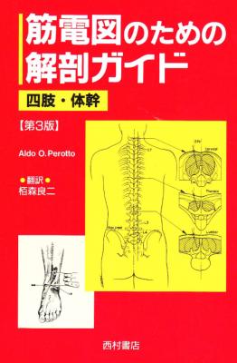 EMG解剖学