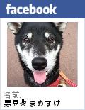 Facebookプロフィールバッジ3