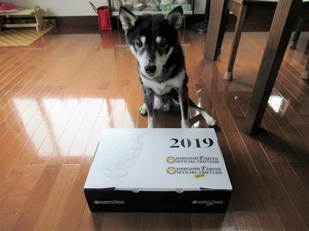 阪神2018年記念品 2