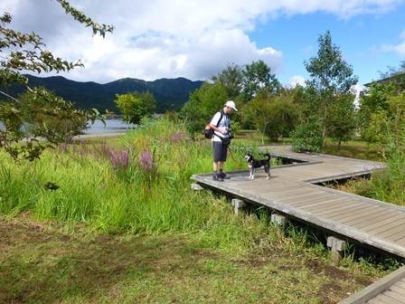 山中湖交流プラザ12