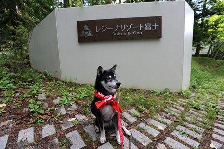 レジーナリゾート富士 (1)