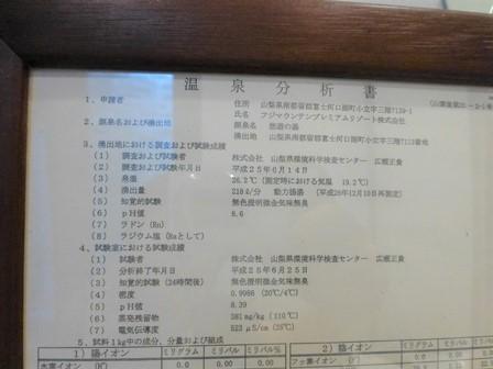 レジーナリゾート富士 (66)