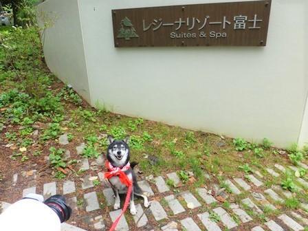 レジーナリゾート富士温泉水プール2