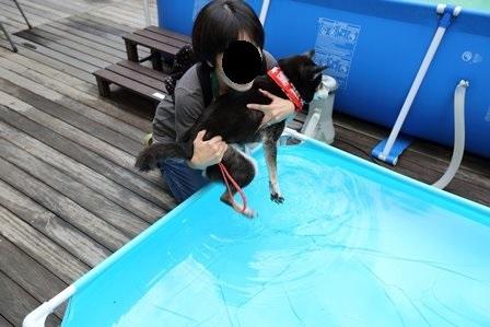 レジーナリゾート富士温泉水プール36